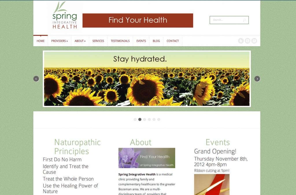 naturopathic clinic website design